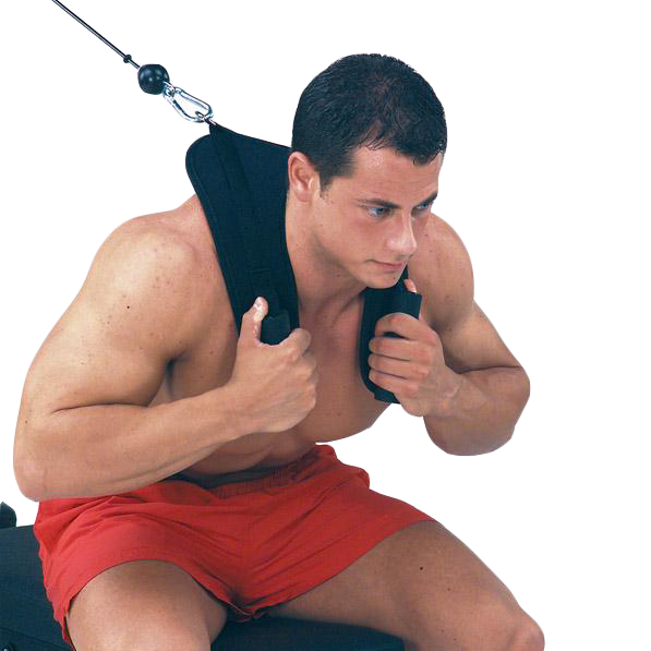 Body-Solid Ab Crunch Harness [ACH18] - demo
