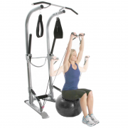 Bodycraft Life Tree Training Tower [T3] - stability ball shoulder press