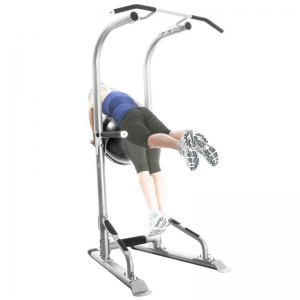 Bodycraft Life Tree Training Tower [T3] - stability ball