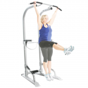 Bodycraft Life Tree Training Tower [T3] - lower abs