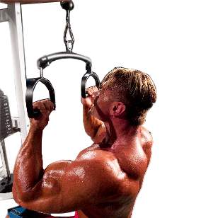 Motion Transfer Cable Attachment (Adjustable Width) - lat pulldown