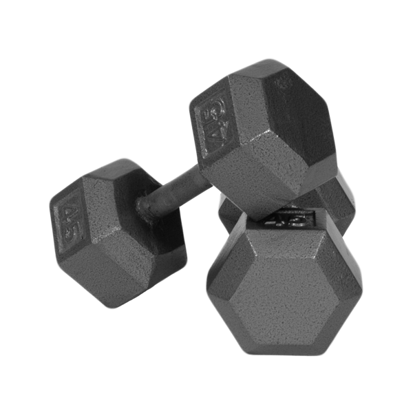 Troy Solid Hex Dumbbells [IHD]