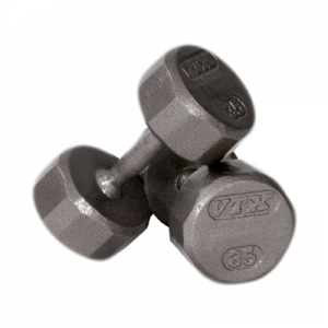 Troy VTX Pro 12-sided Solid Gray Dumbbells [SD-V]