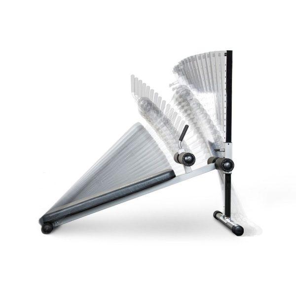 BodyCraft Adjustable Ab Bench [F680]